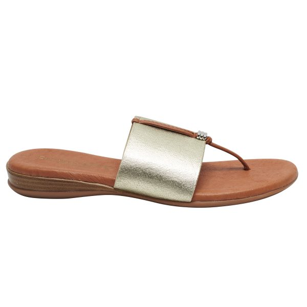 Andre Assous Nice thong style sandal with leather padded footbed and wide elastic band| Ooh! Ooh! Shoes woman's clothing and shoe boutique naples, charleston and mashpee